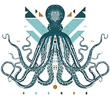 The Majestic Octopus Photographic Print