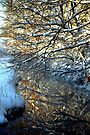 Snowy Creek Reflection by Kim McClain Gregal
