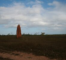 Termite Pinnacle - North Queensland by DanielRyan