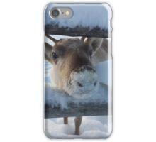 Finnish Reindeer iPhone Case/Skin