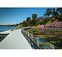 Rippleside Board Walk, Geelong Photographic Print