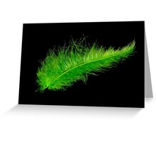 Green feather Greeting Card