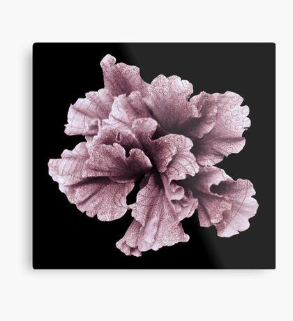 Flower Home Decor-Annais Pink Flower Metal Print