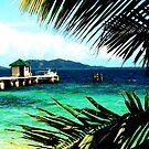 White wharf - Mana Island, Fiji by Tisa