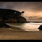 Dawn Glow on Limestone Coast by Robert Mullner