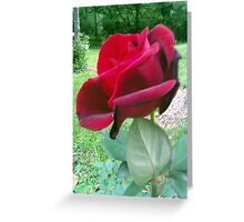 cellphone rose Greeting Card