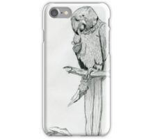 A Playful Parrot iPhone Case/Skin