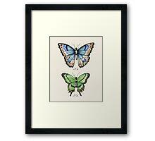 Butterflies N.01 & N.02 Framed Print