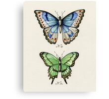 Butterflies N.01 & N.02 Canvas Print