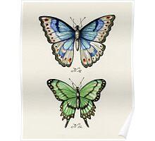 Butterflies N.01 & N.02 Poster