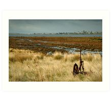 Beacon Point, view to Queenscliff Art Print