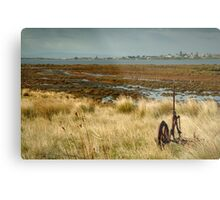 Beacon Point, view to Queenscliff Metal Print