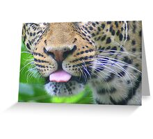 The Leopard's Tongue Greeting Card