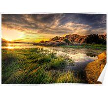 Tall Grass Sunset Poster
