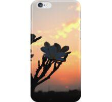 the urban sunset evening iPhone Case/Skin