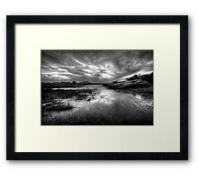 Willow Scenic Black and White Framed Print