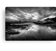 Willow Scenic Black and White Canvas Print