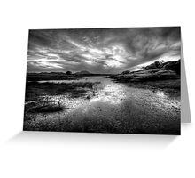 Willow Scenic Black and White Greeting Card