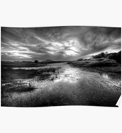 Willow Scenic Black and White Poster