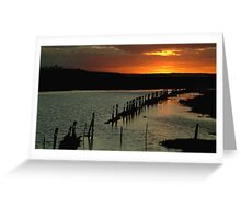 Wet Lands,Portarligton,Bellarine Peninsula Greeting Card