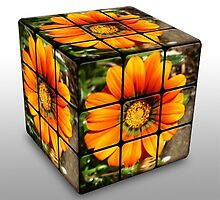 Rubics Cube - Orange by EdsMum