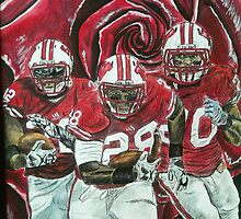 Rose bowl Badgers by Dan Wagner