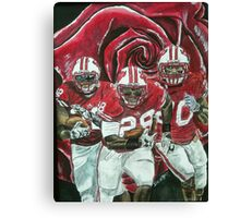 Rose bowl Badgers Canvas Print