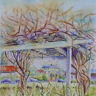 Vine, Millers Homestead, The Basin by Christine Lacreole