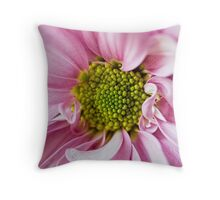 Centre Folds Throw Pillow