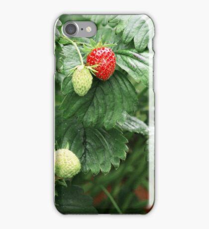 Day 170 iPhone Case/Skin