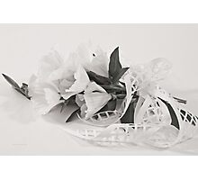 Ribboned White Godetia Flowers Photographic Print