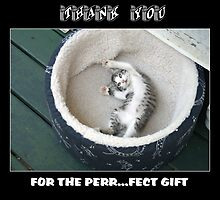 Thank You for the Perr......fet Gift Card by © Joe  Beasley IPA