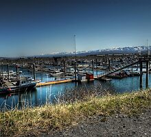 Boat Harbor - Homer Spit, Alaska by Dyle Warren