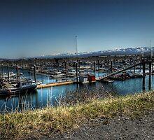 Boat Harbor - Homer Spit, Alaska by Dyle Warren