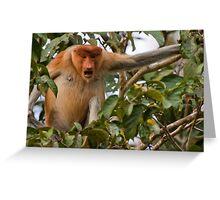 Bellowing Proboscis monkey Greeting Card