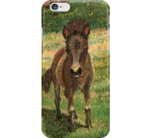 Baby Foal iPhone Case/Skin