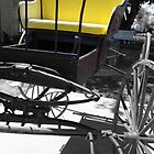Buggy by Susan Bergstrom