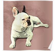 Piglet the French Bulldog Poster