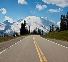 Road to Sunrise, Mt. Rainier National Park by Barb White