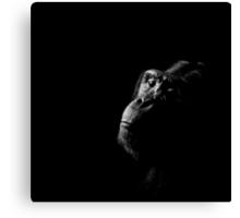 Primate Portraits ~ Part Three Canvas Print