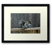 Are you talking to me? Framed Print