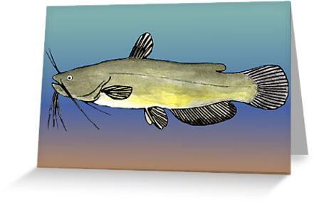 Yellow Bullhead by fishfolkart