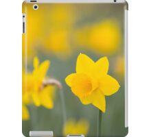 Daffodil yellow iPad Case/Skin