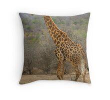 3 Birds and 1 Giraffe Throw Pillow