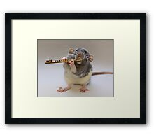 Snuffy Framed Print