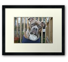 Yes, you called! Framed Print
