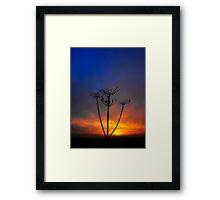 Sunset and Grass Framed Print