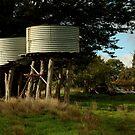 Water Tanks, Macendon Ranges by Joe Mortelliti