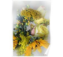 Posies Picturesque Poster