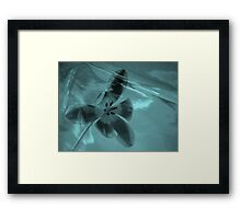 Tulip in a Tulip two ©  Framed Print